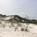 Foto de Pensacola Beach - Casino Beach