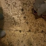 Walk where Jesus and the disciples walked!