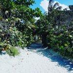 Photo of IBEROSTAR Playa Alameda Hotel