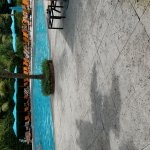 Foto de The Palms Hotel & Spa