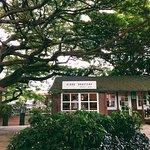 Aloha Roastery Specialty Coffee