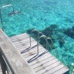 Foto de Sofitel Moorea Ia Ora Beach Resort