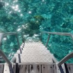 Private steps right into the water - excellent snorkeling right off the room!