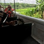 Jungle Land Panama: Day Excursions Picture