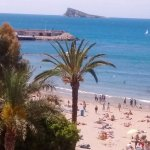 Elche Gardens, poniente beach & Bird Island. View from my balcony.
