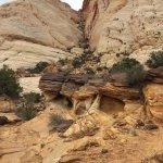 Nice hike - Capitol Gorge Trail (5)