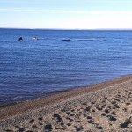 Photo of Playa El Doradillo