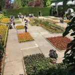 Foto de The Dining Room Restaurant - Butchart Gardens