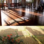 Left: double room, second floor, with interesting tree outside. Right: yoga studio and ricefield