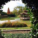 Hunter Valley Gardens Foto