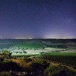 Photo de Wine Relais Feudi del Pisciotto