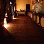 Cantina vini di produzione propria