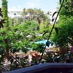 Vue sur le jardin et la piscine