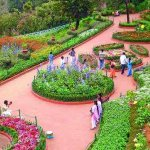 botanical garden view