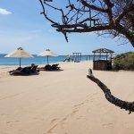 Photo de Uga Jungle Beach