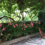La tonnelle entre l'accueil et le jardin