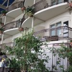 Photo de Hotel L'Oiseliere - Levis