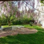 Foto de Casa Blanca Inn & Suites