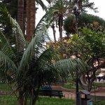 Photo de Apartamentos Bahia Playa
