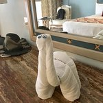 One of the daily towel animals that greeted us.