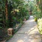 Pasillo hacia el bungalow