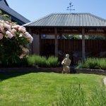 The side garden and gazebo.