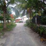 Cocotal Inn & Cabanas ภาพถ่าย