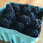 Elderslie Farm (Blackberry Farm)