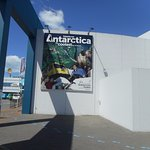 International Antarctic Centre Foto