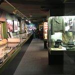 Part of the war exhibit