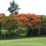 Foto de The Royal Chiangmai Golf Resort