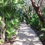 Foto de Mayan Palace Riviera Maya