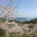 Photo of Ibusuki Seaside Hotel
