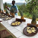 Pineapple tasting