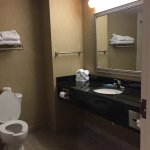 Foto de Holiday Inn Express & Suites Bradley Airport