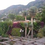 Park Hotel Terme Mediterraneo Photo