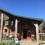 The Green Wood Café