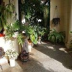 Photo of Casa Particular de la Dra Flora Roca