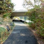 Here is where you go under the Division Street bridge on the Trail (north side of river)