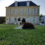Photo de Hotel Chateau Beau Jardin
