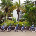 Bikes stood ready for hotel guests to ride.
