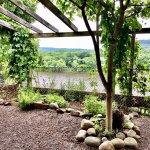 Beautiful beer garden, great beer, food and service!