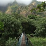 Monday - Iao Valley State Park