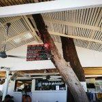 Photo de Baobab
