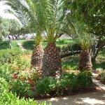 agréables jardins