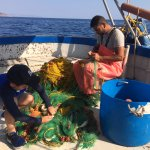 Daily fishing on To Limanaki's boat