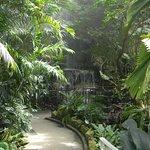 Path to Waterfall