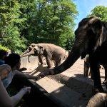 Foto de Hamburg Zoo