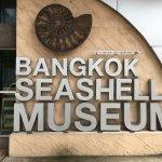 Bangkok Seashell Museum, Thailand