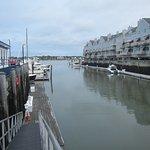 Condo's overlooking Old Port docking